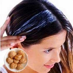 Manfaat kemiri untuk rambut