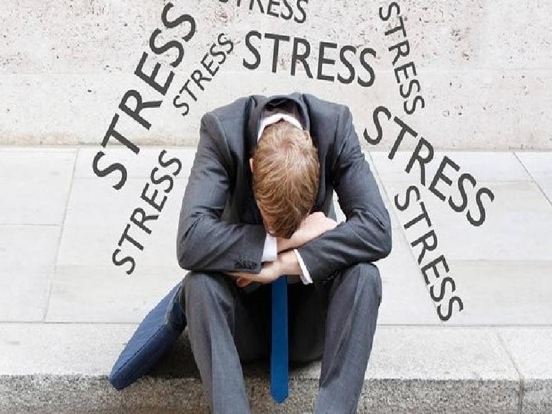 Benarkah Kerja Lapangan Bisa Picu Pekerja Lebih Stres