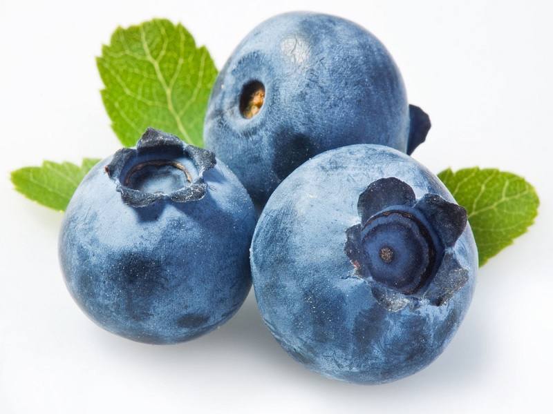 Dibalik Manfaat Blueberry Untuk Diet Hingga Gangguan Otak