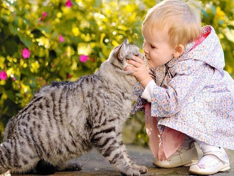 Hewan Peliharaan yang Aman untuk Anak
