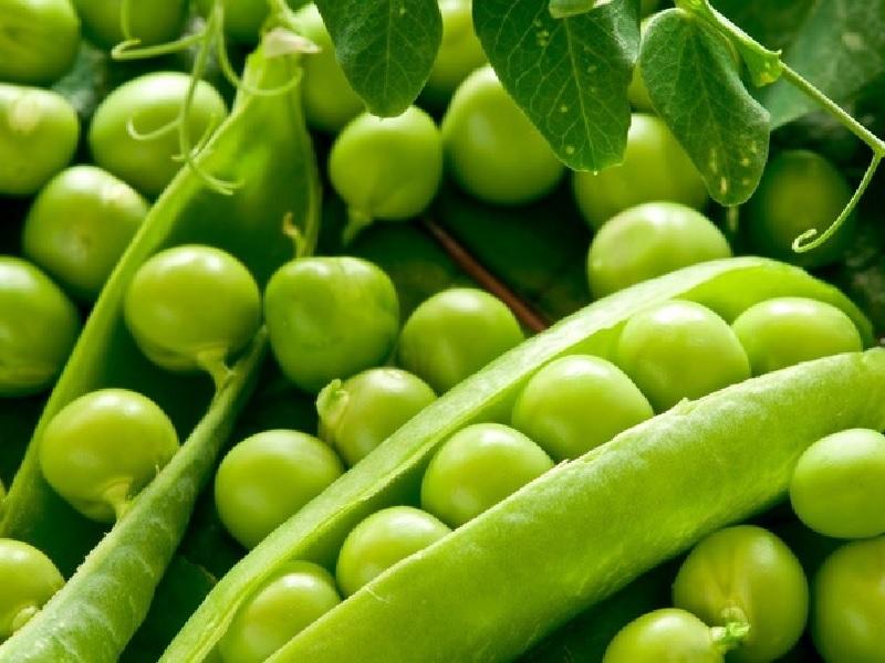 Ingin Program Diet Sukses, Ini Daftar Makanan Rendah Karbohidra