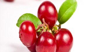 Konsumsi Buah Dan Sayuran Untuk Kesehatan