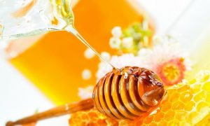 Manfaat madu bagi kesehatan manusia