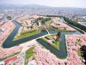 Tempat Terbaik Saksikan Bunga Sakura Pada Musim Semi Di Jepang