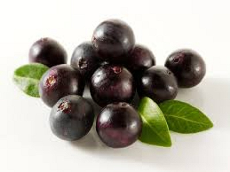 Belasan Manfaat Buah Acai Berry