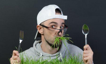 Bolehkan Rumput Dikonsumsi Orang?