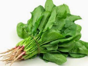 Sayur Rendah Karbohidrat Untuk Pengidap Diabetes1