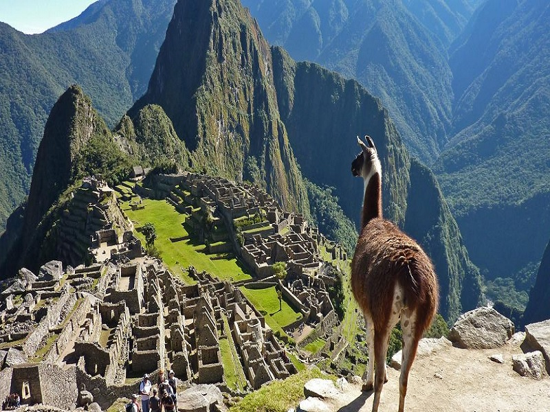Ketahui Sebelum Melancong Ke Machu Picchu