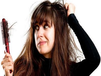 Manfaat Daun Inai Untuk Rambut Wanita