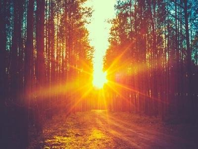 Sinar Matahari Bisa Melindungi Anda Dari Patah Tulang