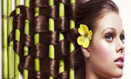 Hebatnya Si Tanaman Herbal Yang Terbukti Ampuh Mengatasi Rambut Rontok