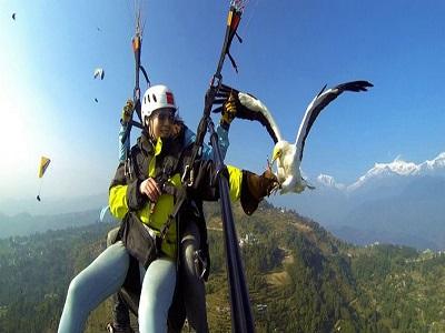 Hebatnya Trik Foto Selfie Ciamik Saat Main Paralayang