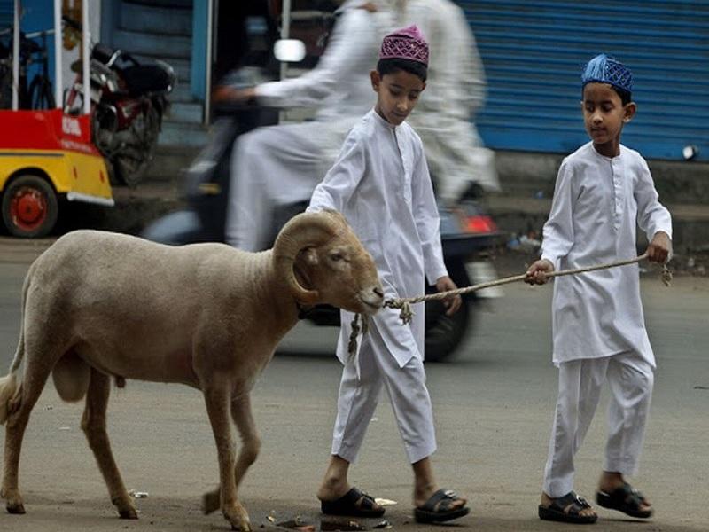 Tradisi Unik Memperingati Hari Raya Idul Adha Di Indonesia