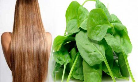 Manfaat Makan Bayam untuk Menebalkan Rambut Secara Alami